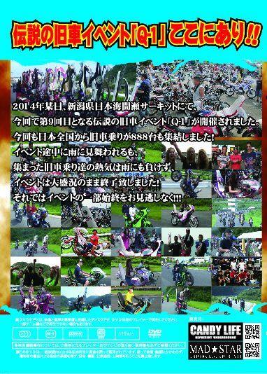 画像2: Q-1 2014